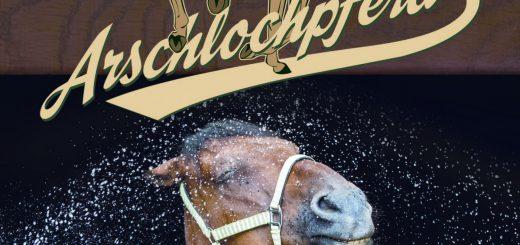 Buch_Cover_Alochpferd.indd